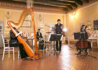 artisti, cantanti, musicisti, strumentisti, professionisti, personaggi famosi, agenzia, booking, Brescia, Milano, noleggio audio, vieo, lici, strutture, effetti speciali